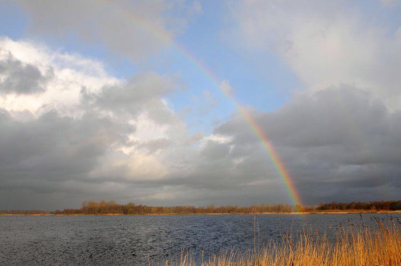 Regenboog boven Botshol van Wim Stolwerk