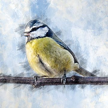 Pimpelmeesje op een tak (tekening) van Art by Jeronimo