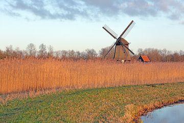 Holland landschapsbeeld met molen sur Ronald Smits
