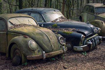 Verlaten auto's van Tim Vlielander