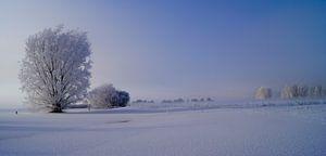 winter landschap van