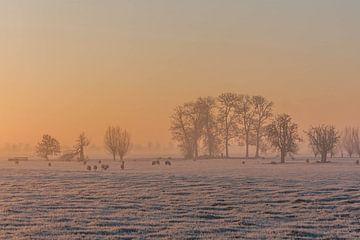 Zonsopkomst in de winter von Stephan Neven