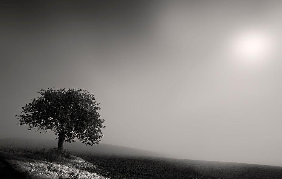 Mist in Rheinland Pfalz van Fons Bitter