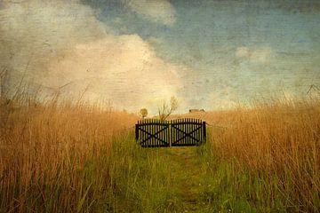 Das Tor im Schilf van Heike Hultsch