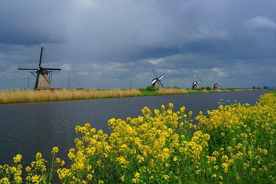 Molens Kinderdijk van Michel van Kooten