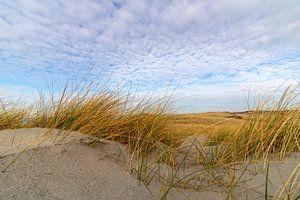 Duinen op Texel met dreigende wolken van Jeroen van Dijk