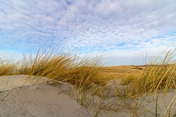 Duinen op Texel met dreigende wolken von Jeroen van Dijk