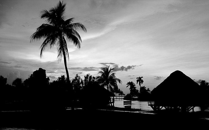 Guama, Cuba van Rik Crijns