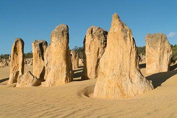 Nambung National Park, West-Australië van Alexander Ludwig