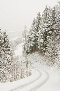 Winterlandschap von Nadia Daneels