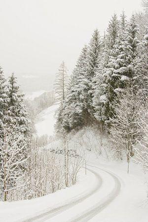 Winterlandschap van Nadia Daneels