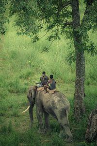 Wilde levensbeschermers in het ruwe oerwoud van Bardia van Edgar Bonnet-behar