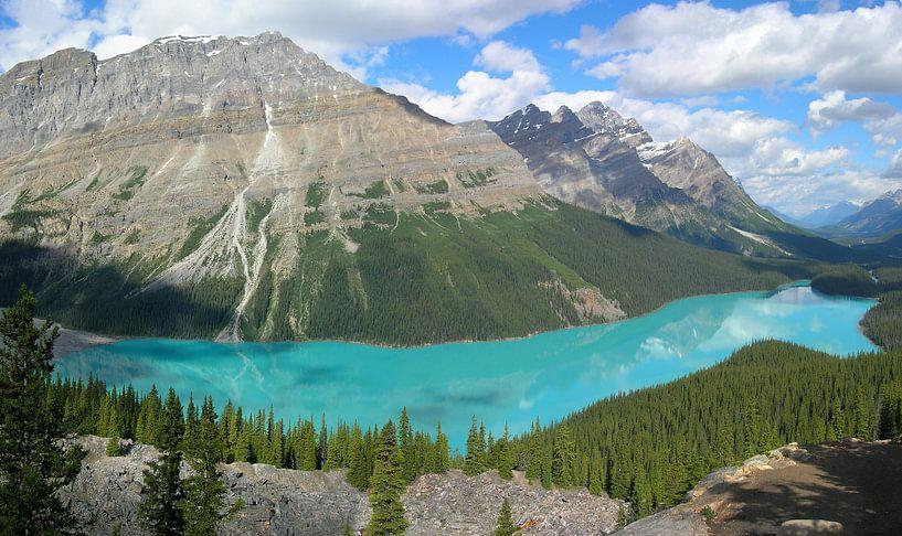 Peyto Lake Banff van