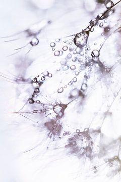 Gewoon druppels water van Bob Daalder