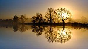 Een mooie zonsopkomst in Meinerswijk natuur park van Eddy Westdijk