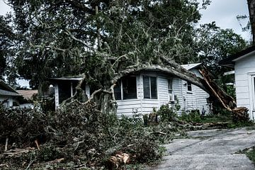 De verwoesting van Orkaan Irma van Jop Beuger
