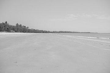 Strand in Cape Tribulation Australien von DsDuppenPhotography