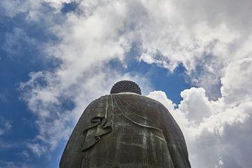 Tian Tan Boeddha van Jolene van den Berg