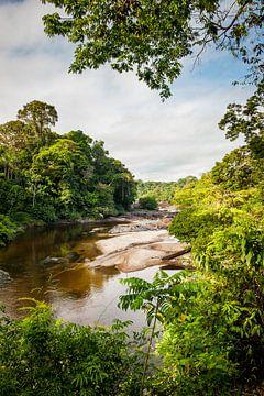 Uitzicht op de Suriname rivier bij Awarradam, Suriname van Marcel Bakker