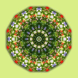 Wildflowers, Flower-Mandala