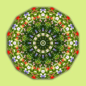 Wildflowers, Flower-Mandala van Barbara Hilmer-Schroeer
