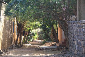 Straat op Île de Gorée van