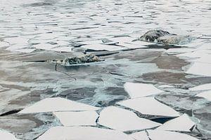 Luchtfoto ijsstructuren McMurdosound