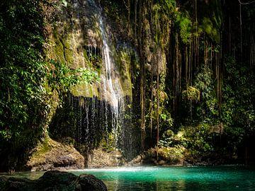 Een oase in het midden van de jungle van Cebu Island van Rik Pijnenburg
