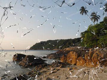 strand met rots van