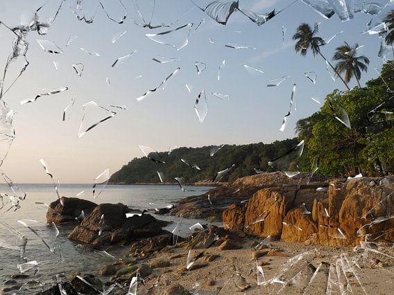 strand met rots