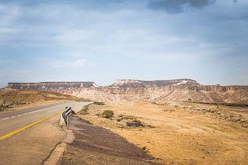 timna national park in israel in the negev woestijnr van Compuinfoto .