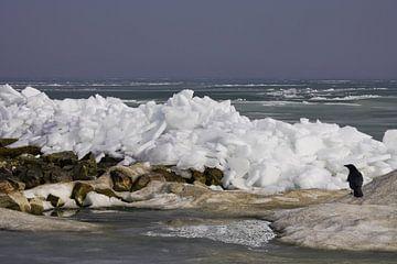 Kruiend ijs op het Markermeer van Alice Berkien-van Mil