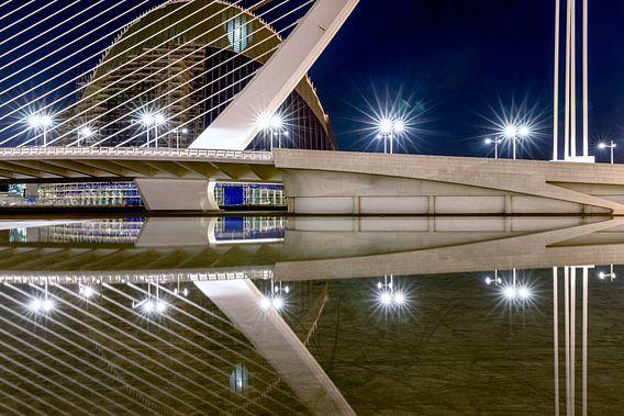 water onder de brug van Rene Siebring