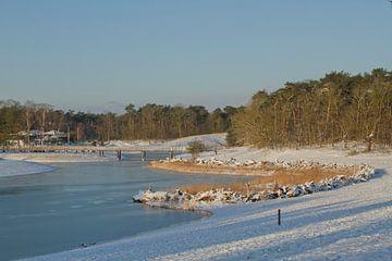 Schnee und Eis in der Bergse Heide von Sabina Meerman