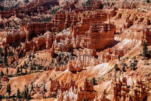 Bryce Canyon Utah van