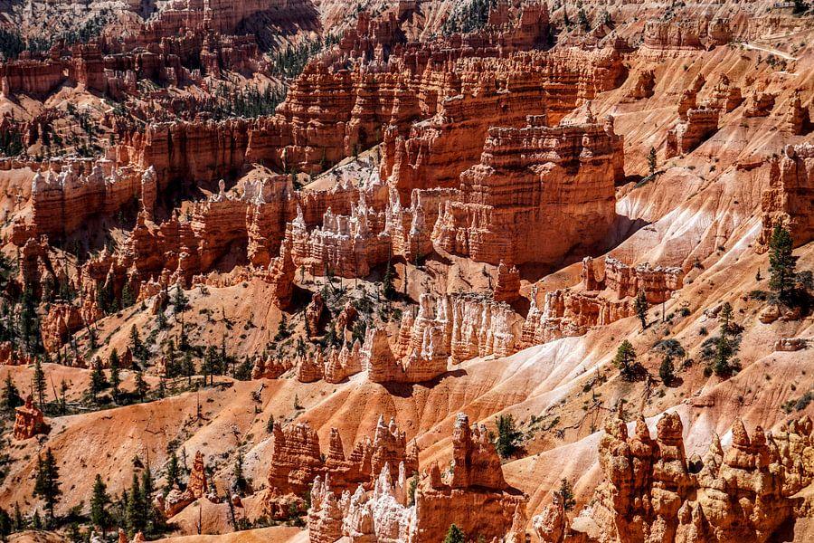 Bryce Canyon Utah van Tineke Visscher