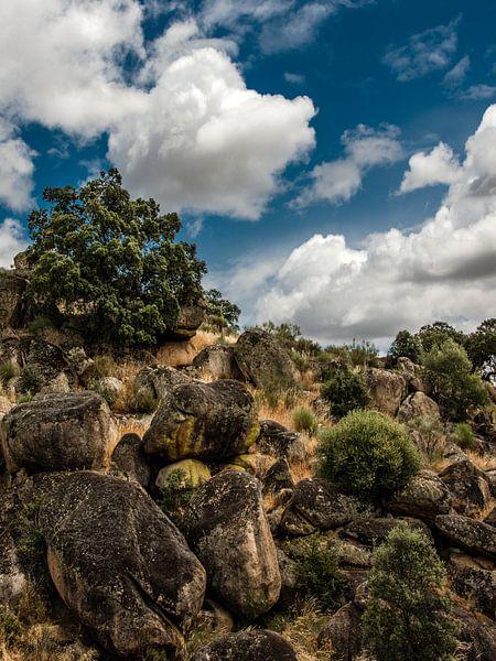 On the rocks van Harrie Muis