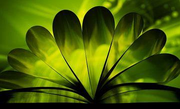 Groen van Marieke Suk