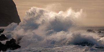 Waves sur Reinier Snijders