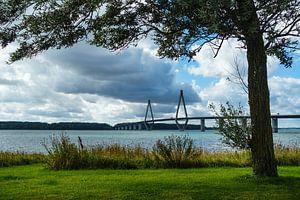Landscape with bridge in Denmark.