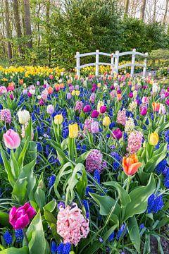 Blühendes Blumenfeld mit Mischblumen und weißer Brücke in Keukenhof von Ben Schonewille