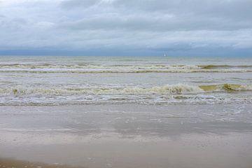 Golven op het strand van Johan Vanbockryck