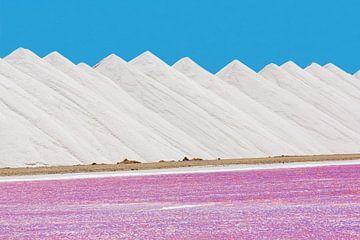 Landschap van witte bergen zout met roze zoutmeer op Bonaire van Ben Schonewille