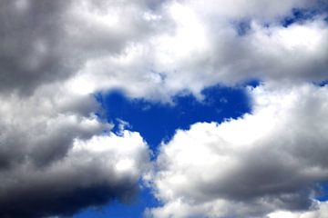 love is in the air von Nienke Stegeman