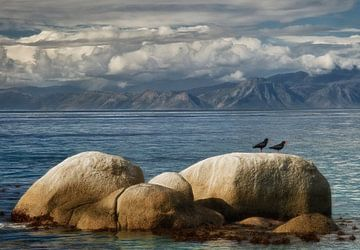 Landschap in Kaapstad von Marcel van Balken