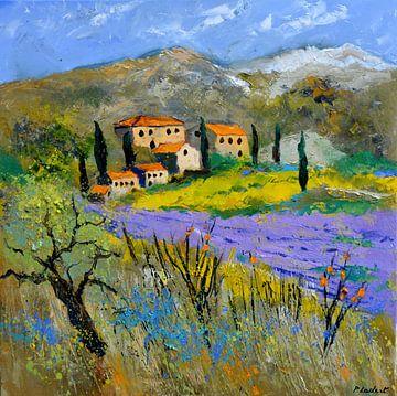 Provence 7791010101 van pol ledent