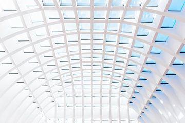 Transparant plafond sur Maerten Prins