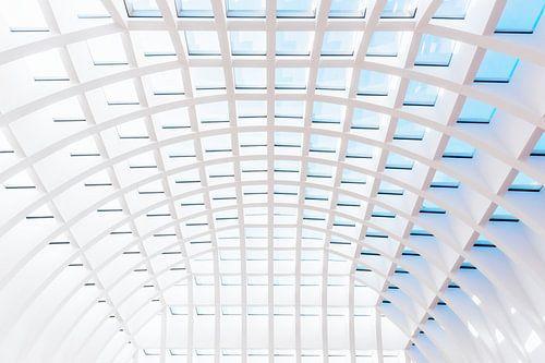 Transparant plafond