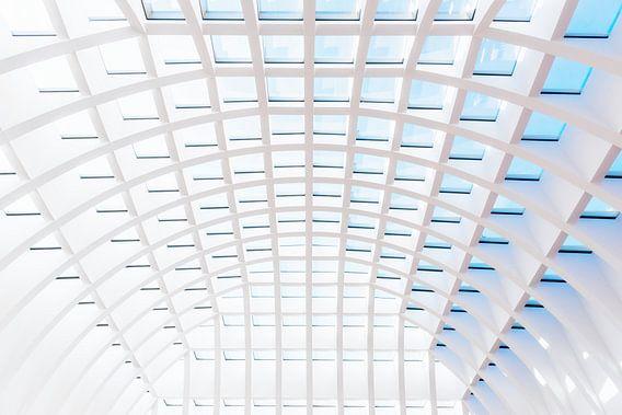 Transparant plafond van Maerten Prins