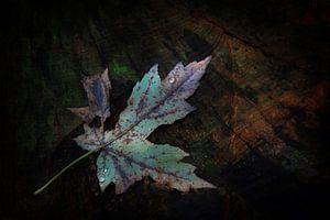 Herfstblad op boomstronk van